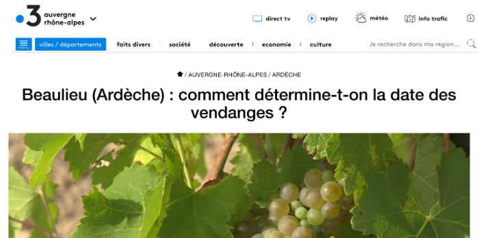 France3 : Vendanges en Ardèche